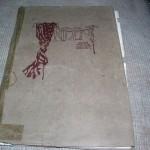 1918-SANTA-CRUZ-HIGH-YEARBOOKANNUALJOURNALCALIFORNIA-350446592837